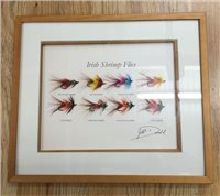 Fishing Tackle & Bait Irish Shrimp Flies Framed Mount