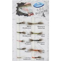 Dragon Tackle C.D.C Buzzers