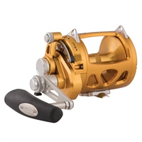 Penn INT30VISW International IV Multiplier Reel